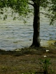 Lac de Furnas